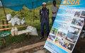 Le projet de réduction des conflits et violences communautaires à Walungu porte des fruits