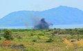 North Kivu: Destruction of Explosive Remnants of War at Mubambiro