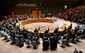 The UN Security Council extends the mandate of MONUSCO until 20 December 2019