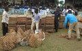 Des volailles et du matériel aratoire pour l'autonomie d'ex-miliciens et de femmes victimes de violences