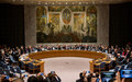 Security Council Press Statement on the death of two members of the Group of Experts on the Democratic Republic of the Congo