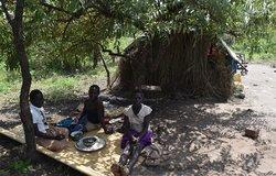 La MONUSCO  extrait six cent trente-quatre personnes du Parc National de la Garamba pour des raisons humanitaires