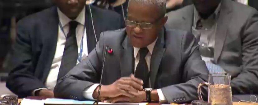 Déclaration du Chef de la MONUSCO, Maman Sidikou, devant le Conseil de sécurité de l'ONU